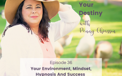 Your Environment, Mindset, Hypnosis And Success With Michelle Petit
